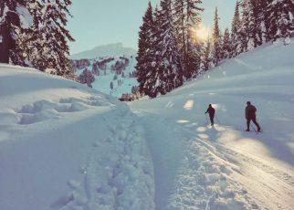 Dlaczego warto jeździć na nartach?